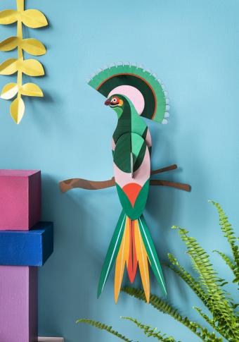 """Paxaro 3D cartón reciclado """"Gili"""""""