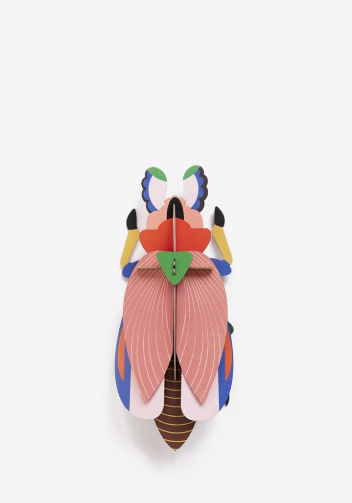 Escaravello femia xigante 3D cartón reciclado